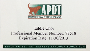 eddie Dog Training APDT Professional Member