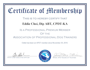 eddie Dog Training APDT Professional Premium Member