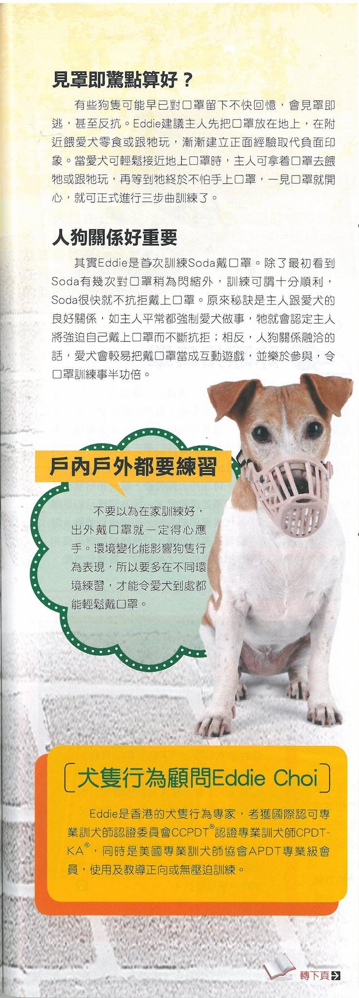 """""""2015-01-05 寵物閒情-讓愛犬喜歡口罩"""